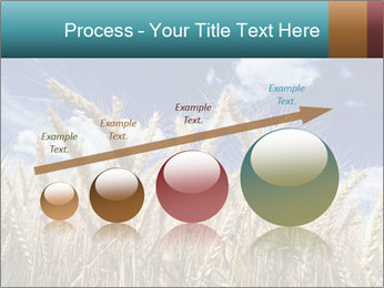 0000086927 PowerPoint Template - Slide 87