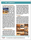 0000086927 Word Template - Page 3
