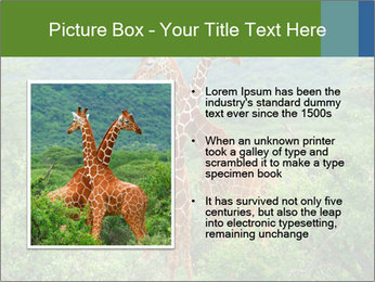0000086928 PowerPoint Template - Slide 13