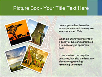 0000086928 PowerPoint Template - Slide 23