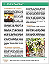 0000086931 Word Template - Page 3