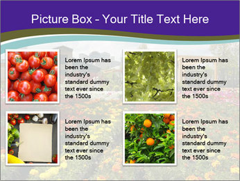 0000086935 PowerPoint Template - Slide 14