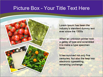 0000086935 PowerPoint Template - Slide 23