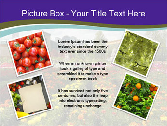 0000086935 PowerPoint Template - Slide 24