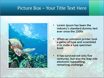 0000086936 PowerPoint Template - Slide 13
