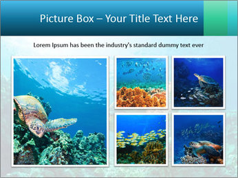 0000086936 PowerPoint Template - Slide 19