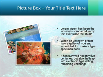 0000086936 PowerPoint Template - Slide 20
