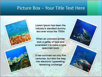 0000086936 PowerPoint Template - Slide 24