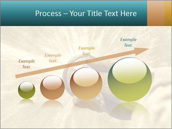 0000086953 PowerPoint Template - Slide 87