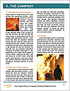 0000086953 Word Template - Page 3