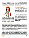 0000086953 Word Template - Page 4
