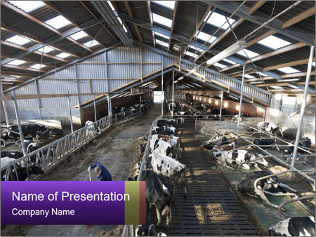 Modern stable interior PowerPoint Template