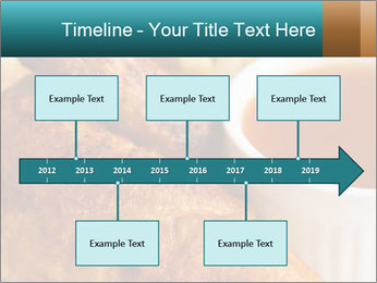 0000086960 PowerPoint Template - Slide 28