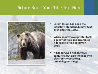 Two skiers view the Tetons PowerPoint Templates - Slide 13