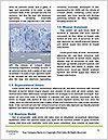 0000086961 Word Templates - Page 4