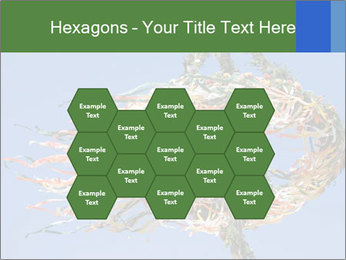 View colored maypole. PowerPoint Template - Slide 44