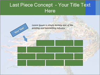 0000086968 PowerPoint Template - Slide 46