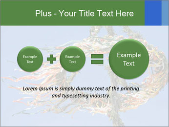 0000086968 PowerPoint Template - Slide 75
