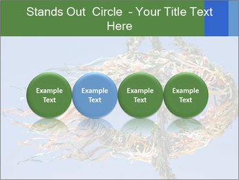 View colored maypole. PowerPoint Template - Slide 76