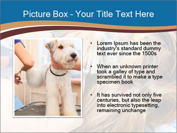 Care for dog hair PowerPoint Templates - Slide 13