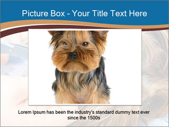 Care for dog hair PowerPoint Templates - Slide 15