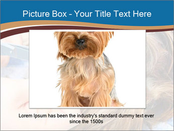 Care for dog hair PowerPoint Templates - Slide 16