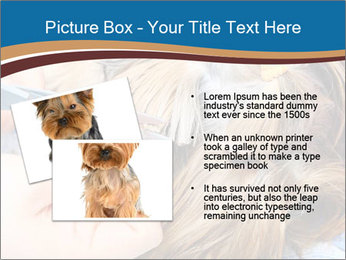 Care for dog hair PowerPoint Templates - Slide 20