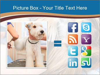 Care for dog hair PowerPoint Templates - Slide 21