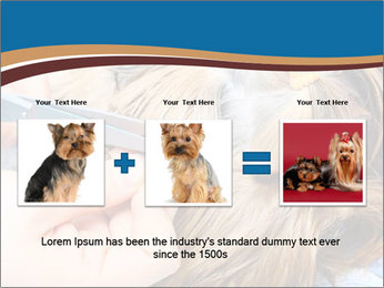 Care for dog hair PowerPoint Templates - Slide 22