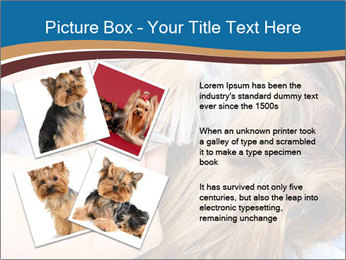 Care for dog hair PowerPoint Templates - Slide 23