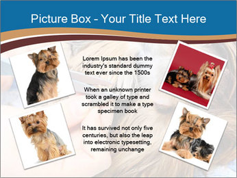 Care for dog hair PowerPoint Templates - Slide 24