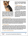 0000086973 Word Template - Page 4