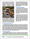 0000086976 Word Templates - Page 4