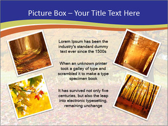 Fall leaves trees PowerPoint Templates - Slide 24