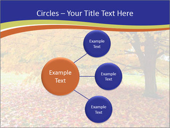 Fall leaves trees PowerPoint Templates - Slide 79