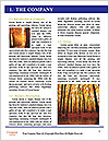 0000086989 Word Templates - Page 3