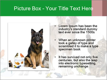 0000086993 PowerPoint Template - Slide 13