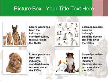 0000086993 PowerPoint Template - Slide 14