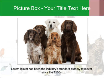 0000086993 PowerPoint Template - Slide 15