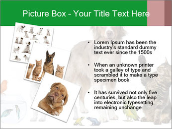 0000086993 PowerPoint Template - Slide 17