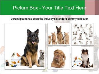 0000086993 PowerPoint Template - Slide 19