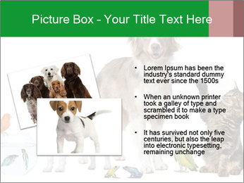 0000086993 PowerPoint Template - Slide 20