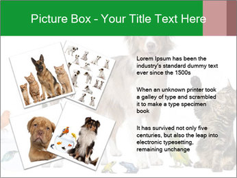 0000086993 PowerPoint Template - Slide 23