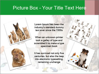 0000086993 PowerPoint Template - Slide 24