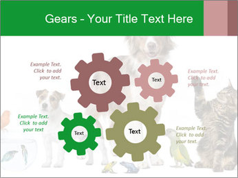 0000086993 PowerPoint Template - Slide 47