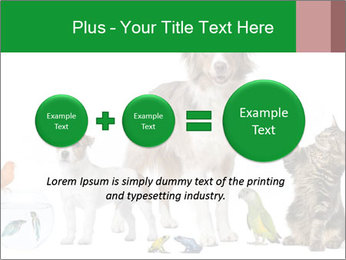 0000086993 PowerPoint Template - Slide 75