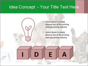 0000086993 PowerPoint Template - Slide 80