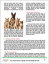 0000086993 Word Template - Page 4