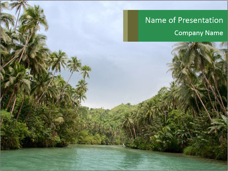 Large tropical river PowerPoint Templates