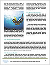0000087005 Word Template - Page 4
